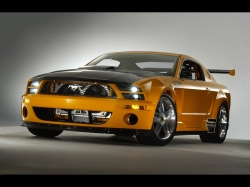 Ford Mustang Shelby500 фото